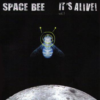 The space bee